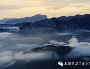 【商会视角】黑龙江省委重大决策体系奏响黑土地上的交响乐章
