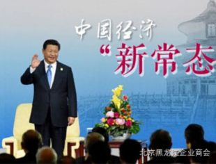 """【政舆之窗】""""新常态"""":一个新词成为治国理念的7个月之旅"""