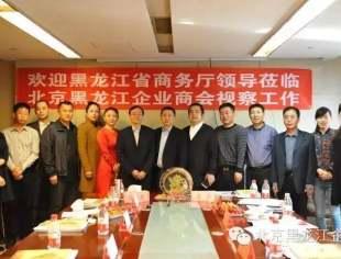 中国龙商国际联盟领导小组调研组到商会考察调研